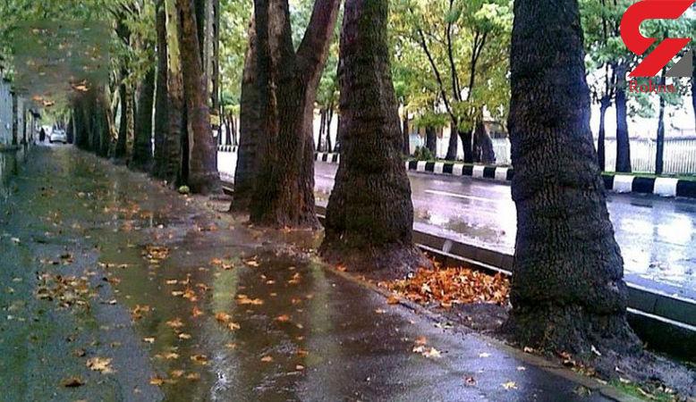 باد و باران خبری خوش برای تهرانی ها