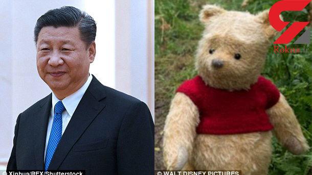 شباهت خرس کارتونی به آقای رییس جمهور + عکس
