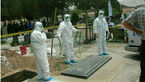 علت دفن بیمار مبتلا به تب کریمه کنگو در سه متری زمین چه بود؟ / گوشت ذبح مستقیم نخرید