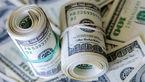 عدم تقاضا برای ارز صادراتی در بازار نیما و افزایش قیمت دلار