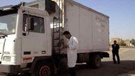 توقیف 4 دستگاه خودرو حمل دام در مهاباد