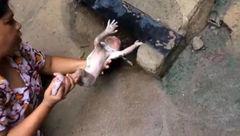 نوزاد تازه متولد شده در فاضلاب رها شده بود! +تصاویر
