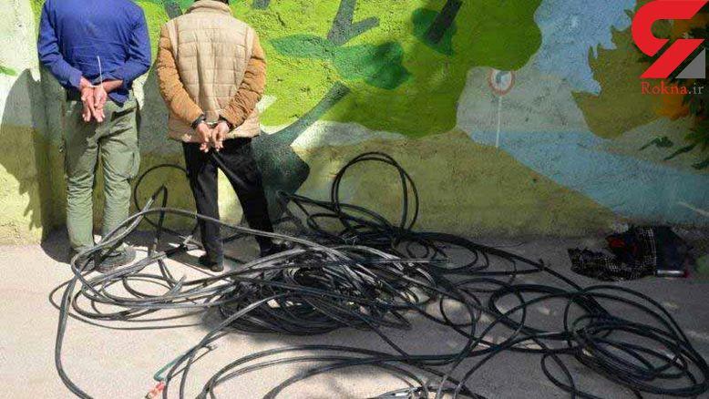 دزدان ارتباط تلفنی 6 روستای نیشابور را قطع کردند