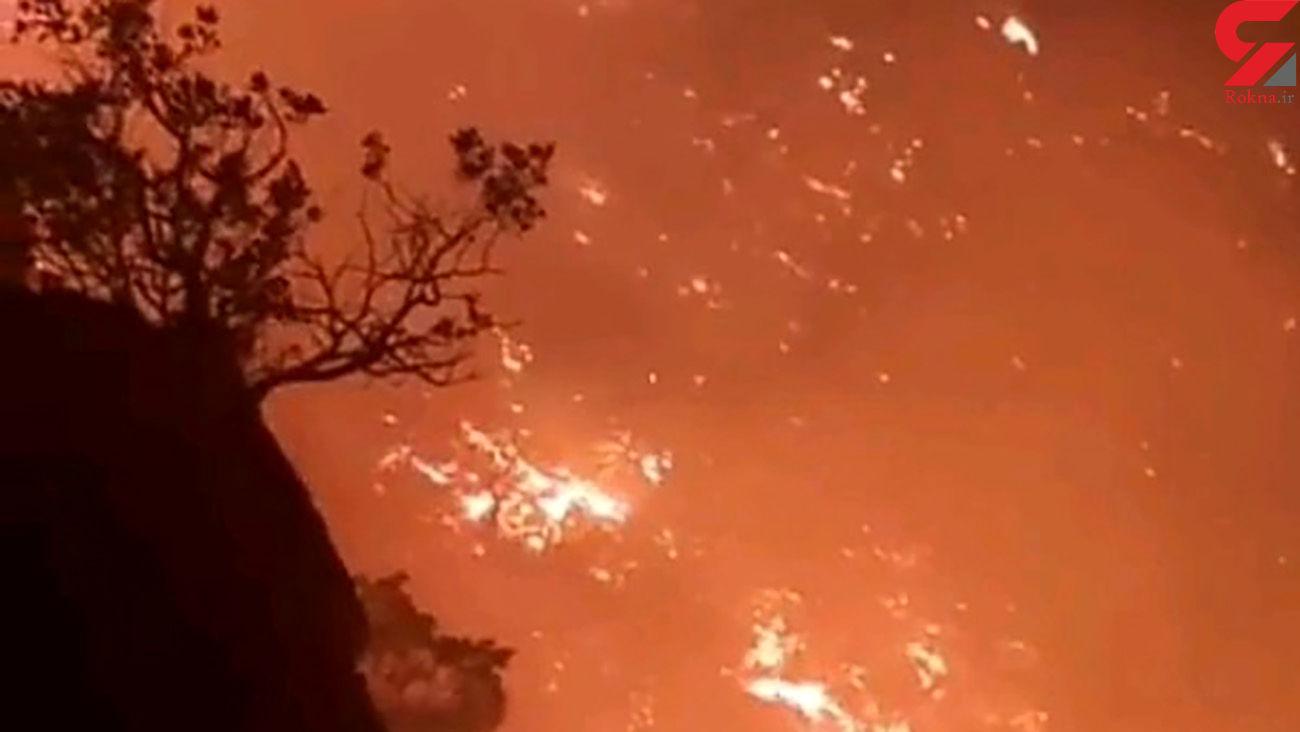 وقوع آتش سوزی در جنگلهای کوه سفید لنده/ پیگیری اعزام بالگرد