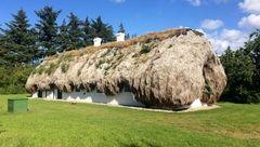 قیمت عجیب و هنگفت خانه ای  ۳۰۰ ساله از جنس جلبک دریایی+عکس