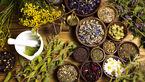 گیاهان جوان کننده مغز