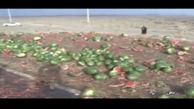 کامیون هندوانه در خاش واژگون شد + فیلم