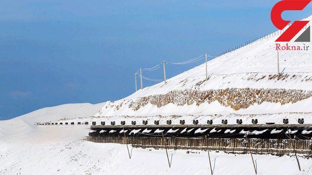 بارش برف موجب قطع آب و برق برخی مناطق یاسوج شد