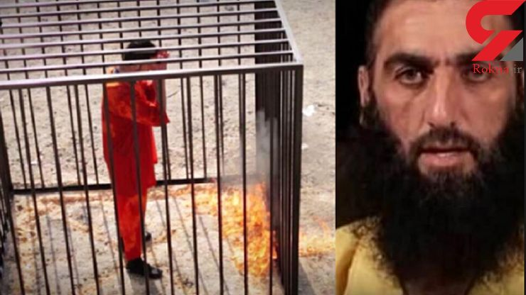 صدام شتر داعشی دستگیر شد +عکس