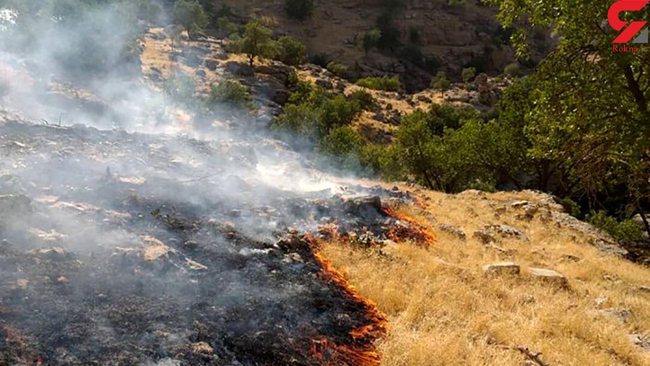 آتش سوزی در کوههای بخش ارم دشتستان