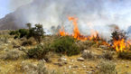آخرین خبر از آتش پارک ملی گلستان