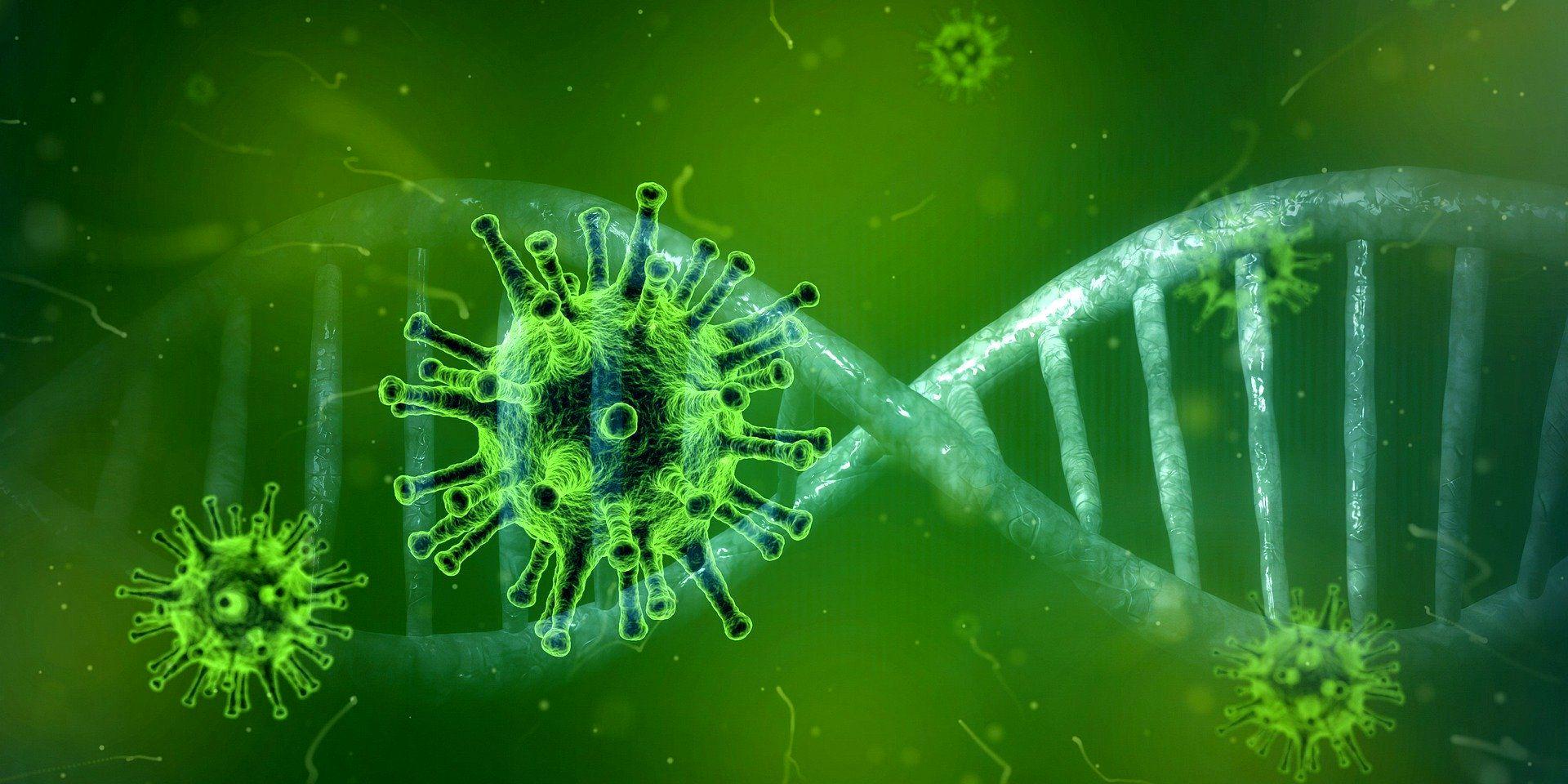 منشاء جدید ویروس کرونا کشف شد/ پانگولین عامل ابتلا به کووید ۱۹ در انسانهاست!؟