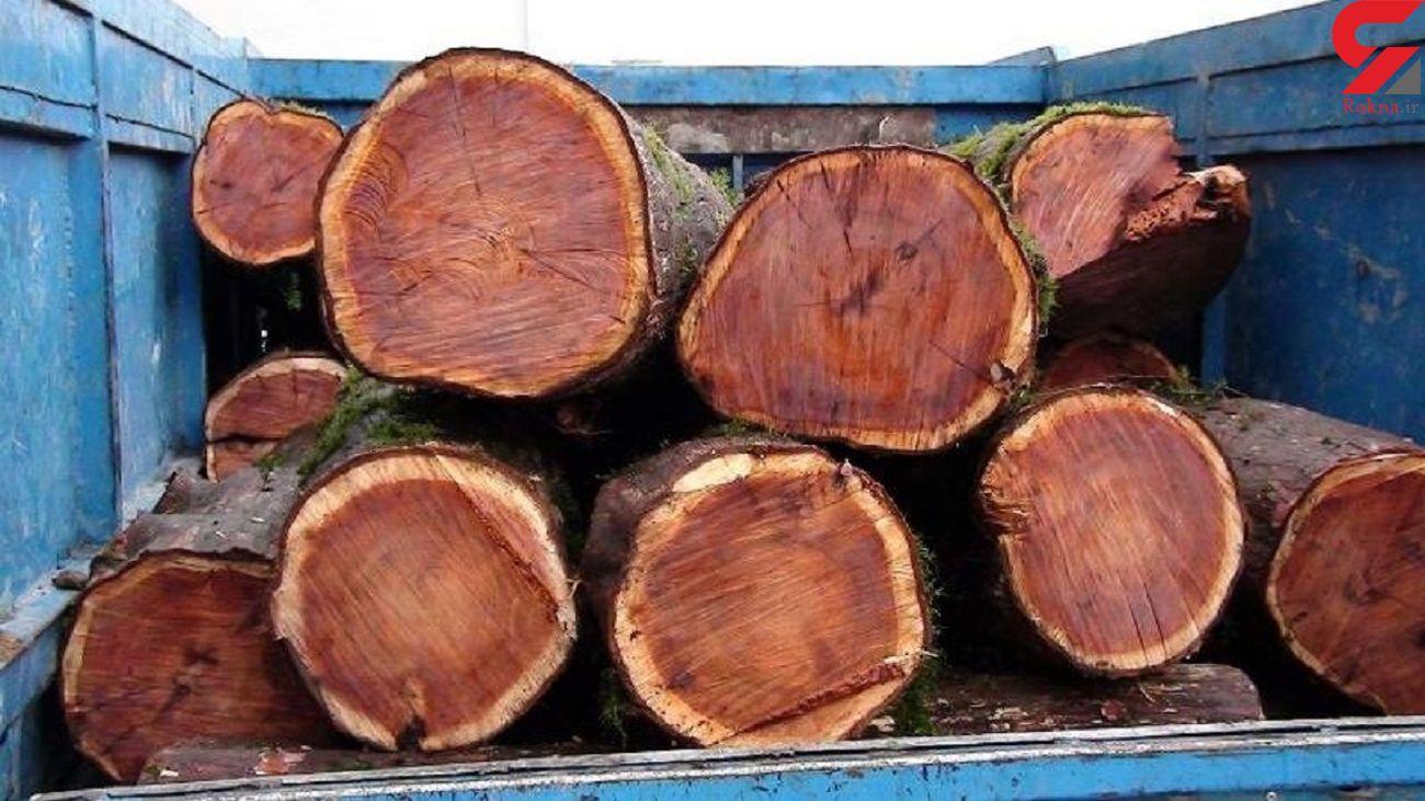 توقیف محموله 12 تنی چوب قاچاق در سقز