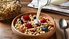 خوراکی های سرشار از آهن برای سلامت کودکان