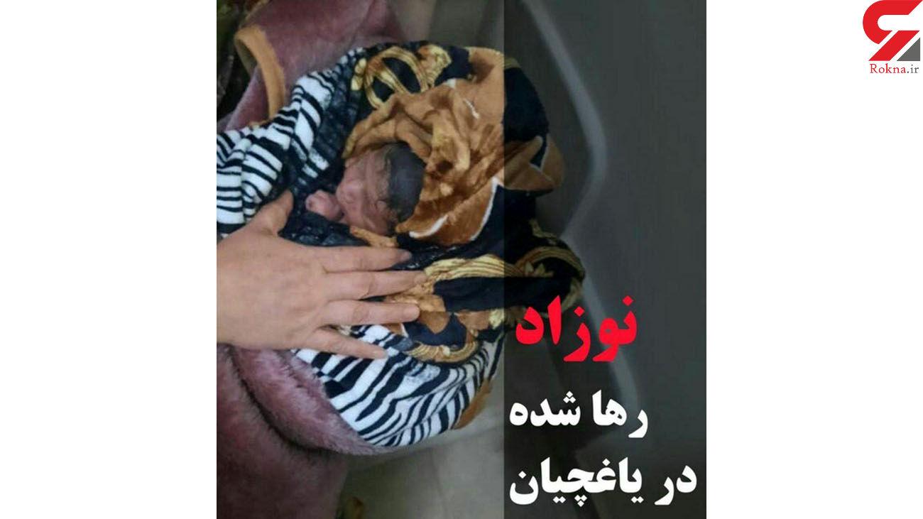 نوزاد تبریزی چند ساعت بعد از تولد آواره خیابان ها شد / شب گذشته رخ داد