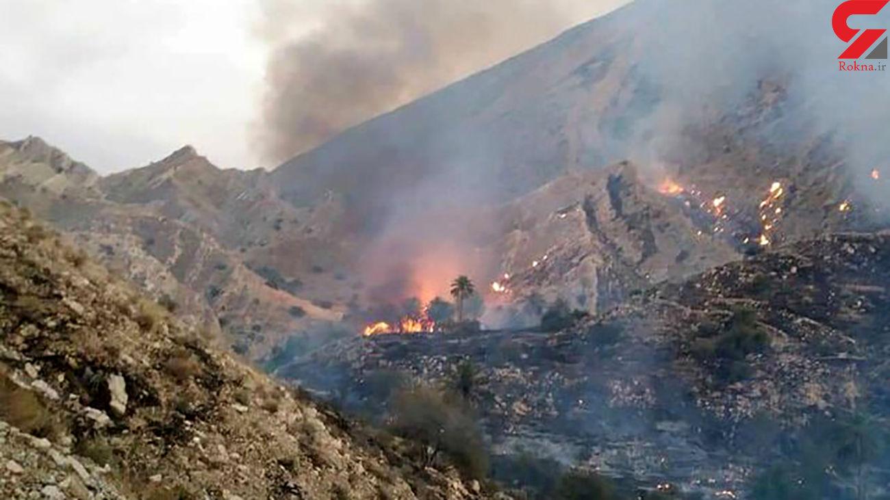 برخورد با عاملان آتش زدن بقایای محصولات کشاورزی در لرستان