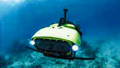 احیای مرجان های دریایی با یک روبات