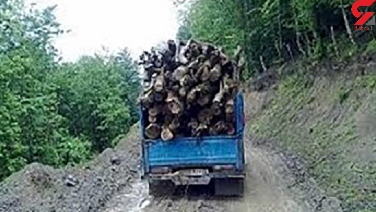 کشف چوب قاچاق در سوادکوه شمالی