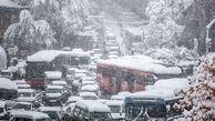 برف 20 سانتی متری داد شورای شهریها را درآورد