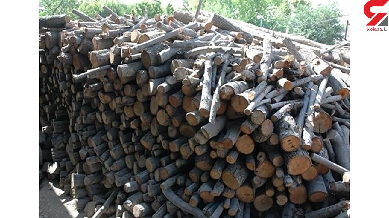 کشف 60 تن چوب جنگلی قاچاق در رامیان