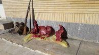 دستگیری شکارچی غیرمجاز در اردبیل
