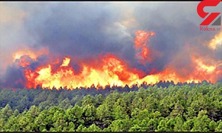 آتش سوزی 4 هکتار از مراتع جاده بوئین و میاندشت