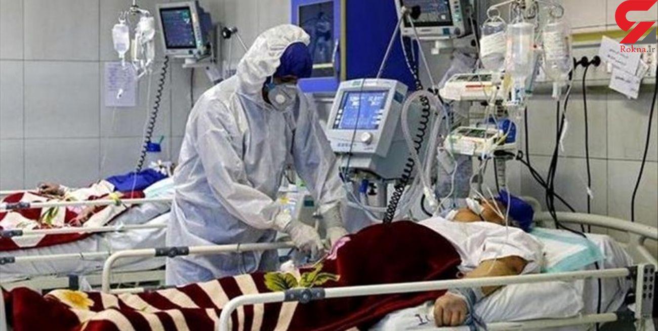 فوت 9  کرونایی جدید در بوشهر/ جانباختگان 145 نفر شدند