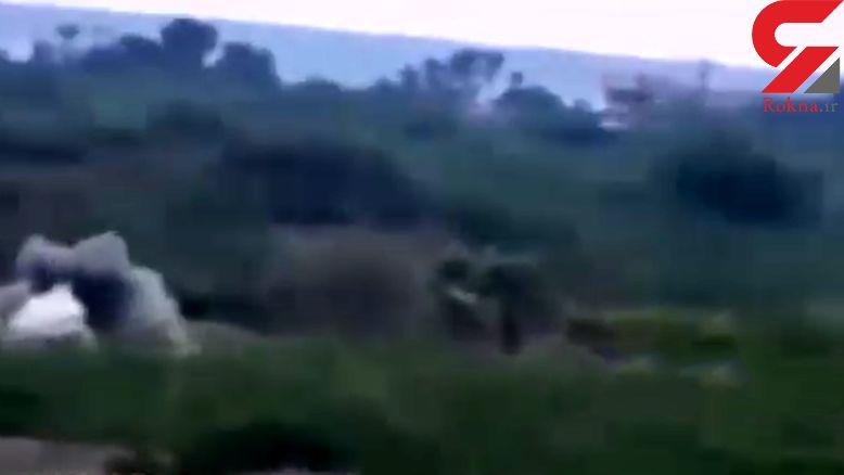 شلیک دقیق واحدهای توپخانه یمن به محل تجمع ارتش عربستان+ فیلم و عکس