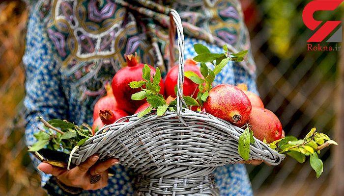 کنترل آلزایمر با این میوه زمستانی