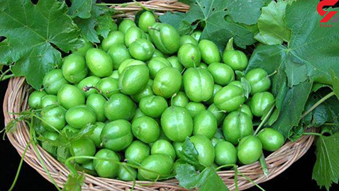 گوجه سبز برای این افراد ممنوع!