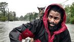 فیلم دیده نشده از طوفان هولناک فلورانس+ تصویر
