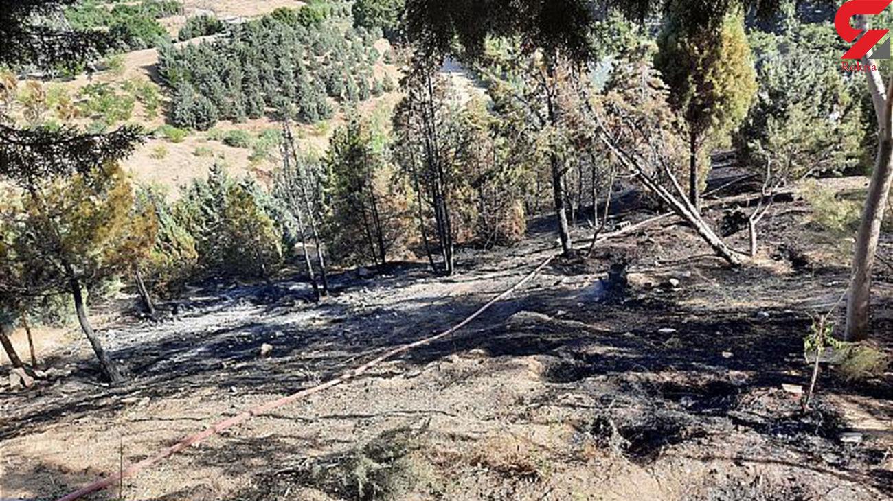 آتش سوزی هولناک در پارک جنگلی کوهسار تهران + عکس