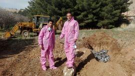 مرگ مرموز 5 هزار کبوتر در اسلام آباد غرب + عکس دفن لاشه ها با لباس مخصوص