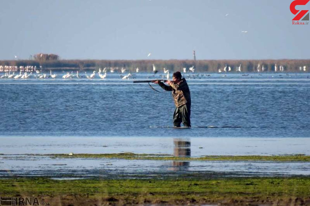 دستگیری 17 شکارچی غیرمجاز در مازندران