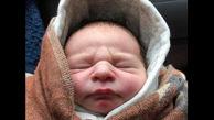 این نوزاد زیبا  در میان بوته ها رها شده بود + عکس / لندن