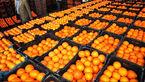 قیمت انواع میوه پایین است/ افزایش تولید مرکبات در سال جاری