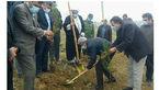 کاشت ۲۰۰اصله درخت در شهرستان هشترود