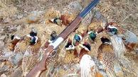 شکارچی متخلف در تربتحیدریه به انجام خدمات عمومی محکوم شد