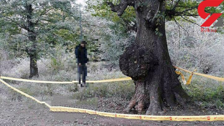 راز جسد پسر جوان در جنگل شیاده بابل + عکس مجل جسد