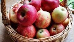 کاهش وزن فوری با خوردن این میوه ناشتا