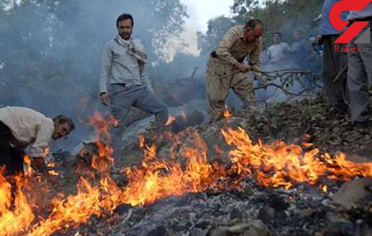 آتش سوزی در عرصه منابع طبیعی مشکل اصلی گلستان است