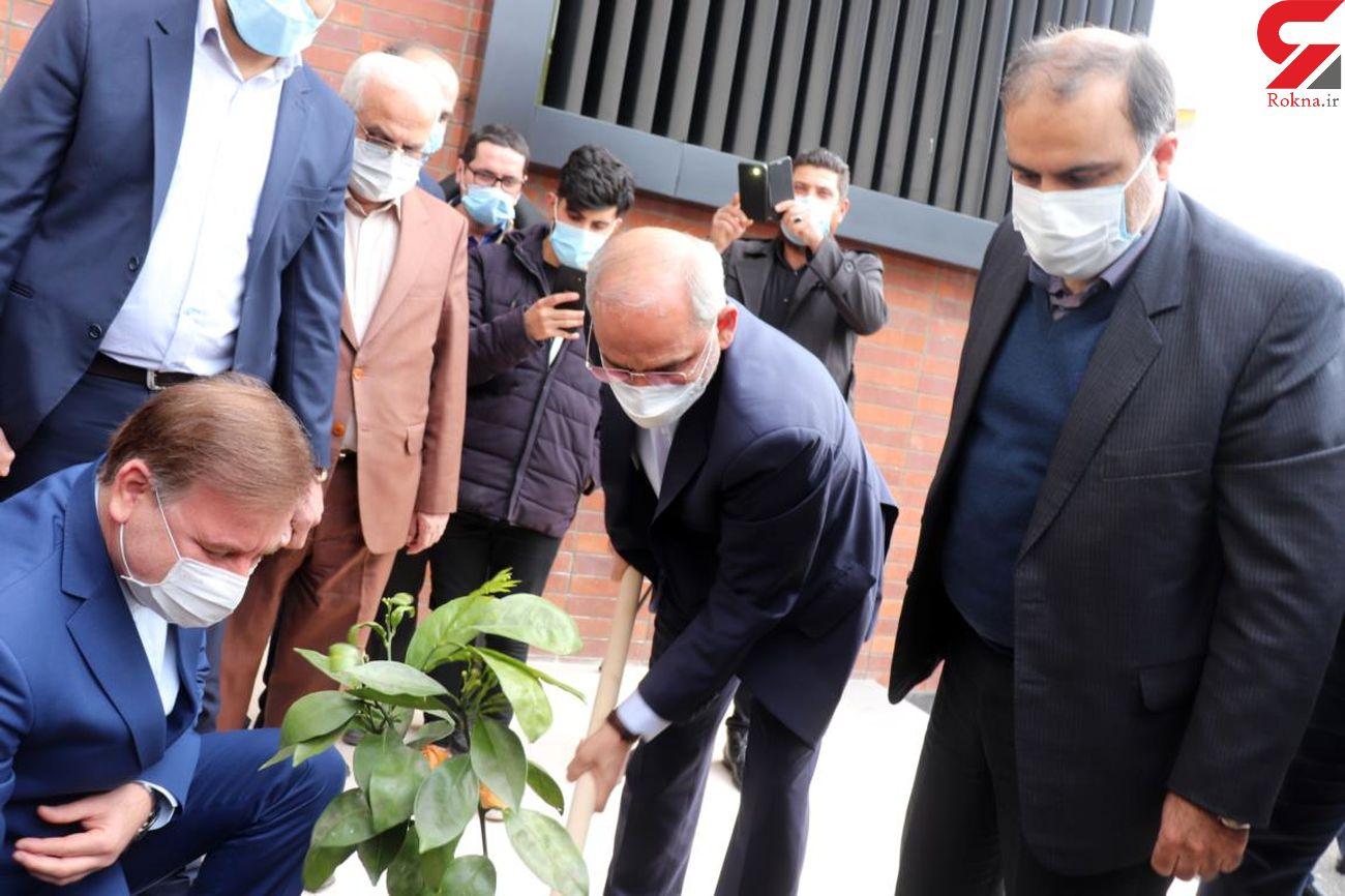 غرس نهال همزمان با حضور وزیر آموزش و پرورش در مدرسه شهید حاج حسن حجتی