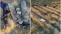 کشف 2 جسد سر بریده در زمین های کشاورزی نسیم شهر