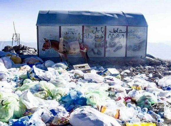 آقای «کلانتری» زباله های کوهنوردان دماوند را به نابودی کشانده است + فیلم