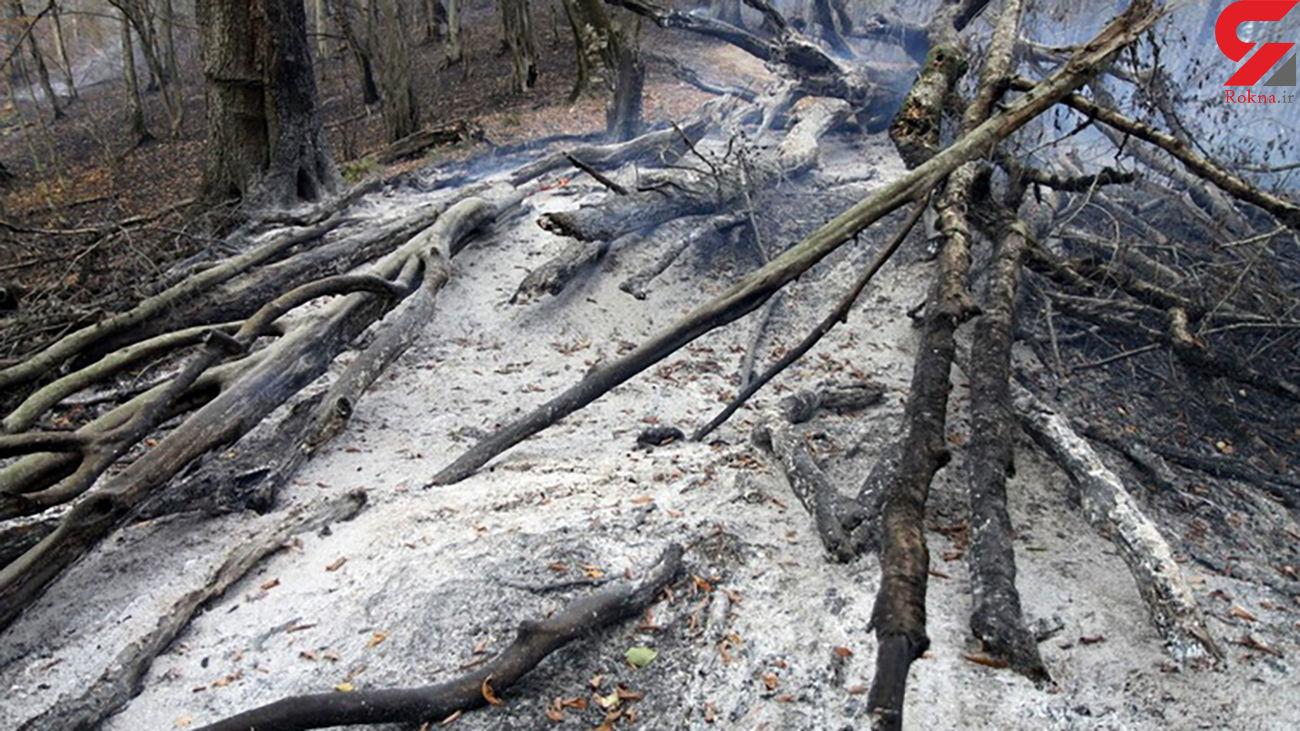آتش جنگل های گلستان مهار شد