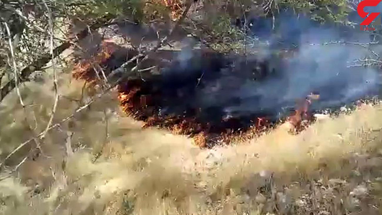 آتشسوزی هولناک منابع طبیعی در مبارک آباد + فیلم