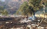 150 هکتار جنگل بلوط ایذه گرفتار آتش شد