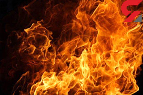 34 بز در بهشهر زنده زنده در آتش سوختند