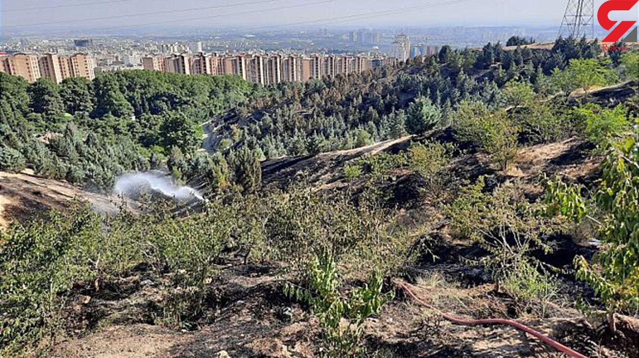 مدیریت پارکهای جنگلی تهران به شهرداری داده شد