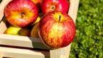 چرا قبل از غذا باید سیب خورد؟
